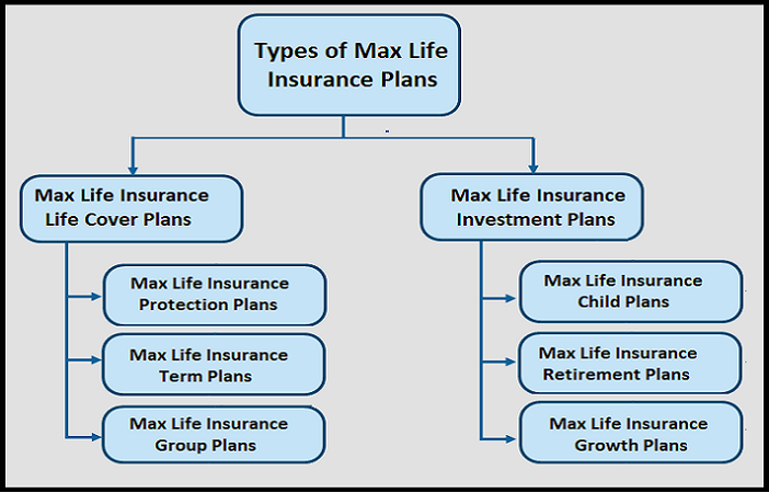 Types of Max Life Insurance Plans